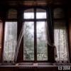 Feuchtes Fenster
